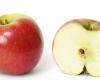 Jakie produkty żywnościowe są dla nas najlepsze?