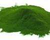 Sekretny składnik Chlorelli